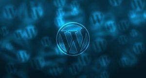 optimisation d'un site WordPress